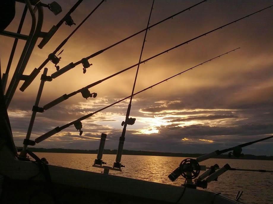 mega bite charter fishing